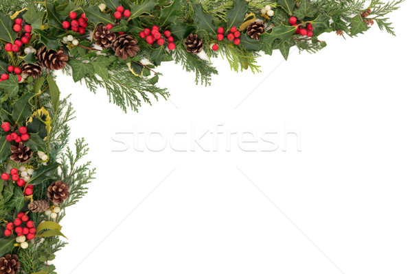 Stock photo: Christmas Floral Border