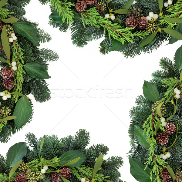 Stock photo: Mistletoe Kisses
