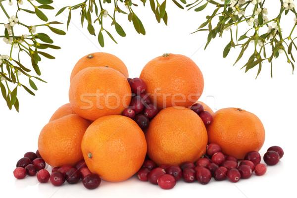 Visco natal abstrato fronteira tangerina Foto stock © marilyna