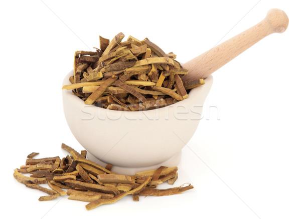 Amur Cork Tree Bark Herb Stock photo © marilyna