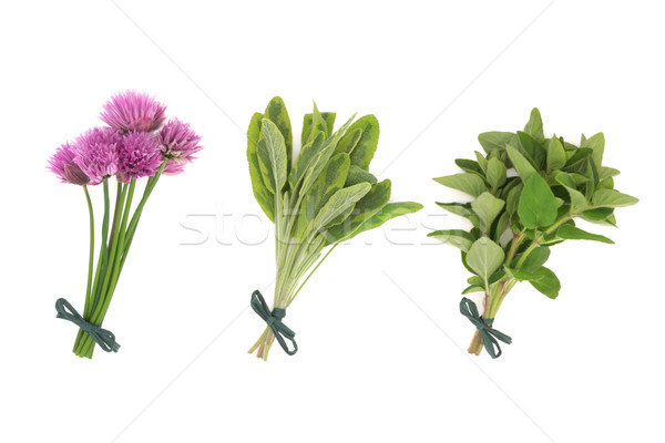 Chives, Sage and Oregano Herbs Stock photo © marilyna