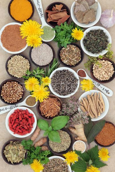 Fűszer gyógynövények gyógynövény használt természetes alternatív Stock fotó © marilyna