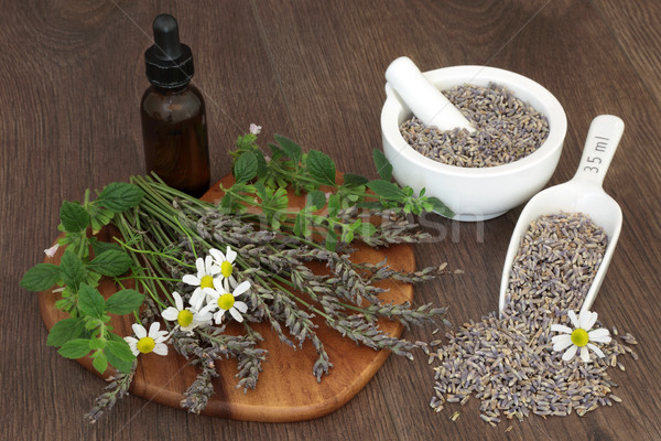 Natural Herbal Medicine Stock photo © marilyna