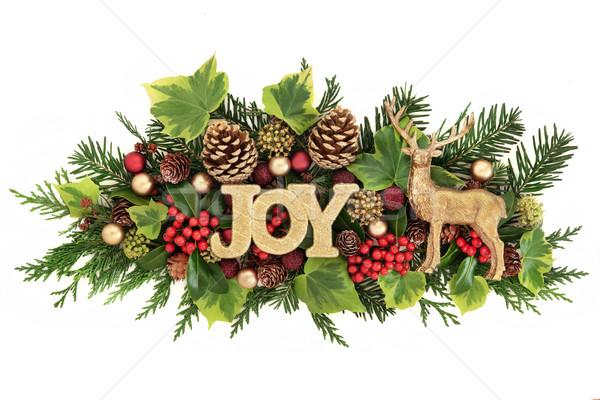 Foto d'archivio: Natale · gioia · decorazione · glitter · segno · renne