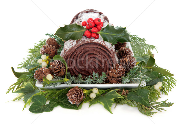 Chocolate Yule Log Stock photo © marilyna