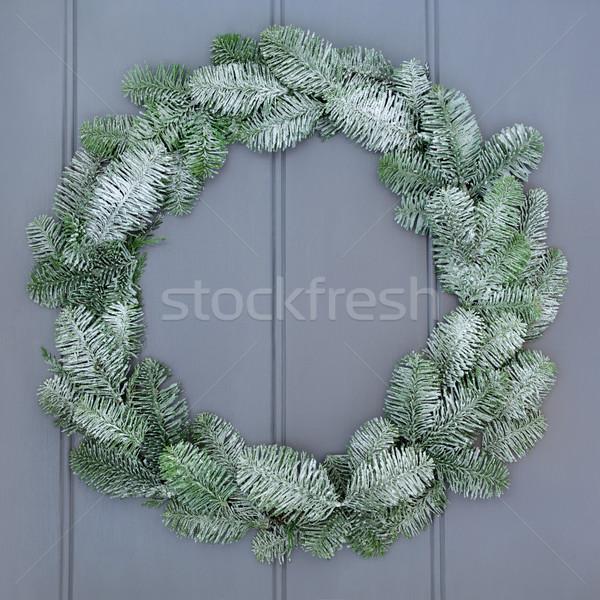 Mavi ladin Noel çelenk kar Stok fotoğraf © marilyna