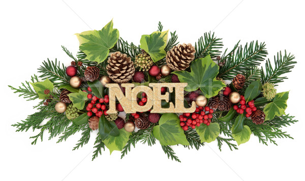 Winter Flora and Noel Decoration Stock photo © marilyna