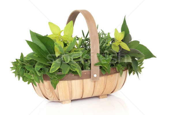 Stock photo: Herb Basket