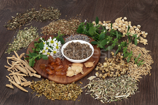 Herbal Medicine for Anxiety and Sleeping Disorders Stock photo © marilyna