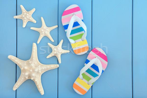 Spiaggia starfish mare conchiglie Rainbow Foto d'archivio © marilyna
