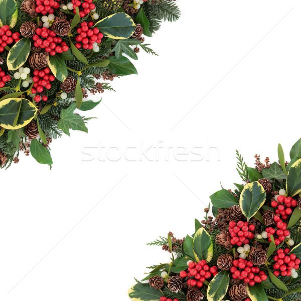 Winter Holly Border Stock photo © marilyna
