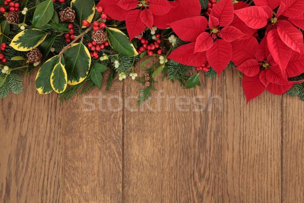 Stock photo: Winter Floral Border