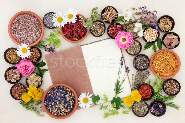 Herbal Medicine Ingredients Stock photo © marilyna