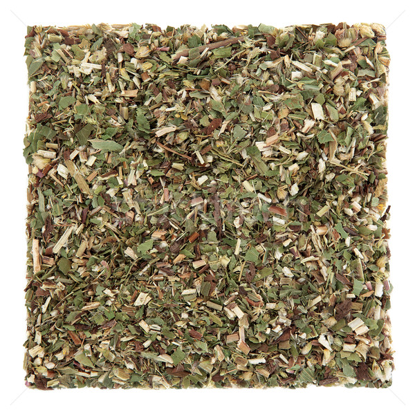 Goldenrod Herb Leaf Stock photo © marilyna