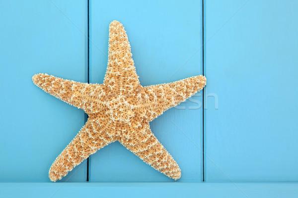 Zeester houten Blauw ontwerp star Stockfoto © marilyna
