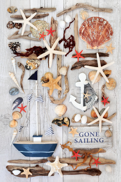 Sailing Themed Seaside Abstract  Stock photo © marilyna