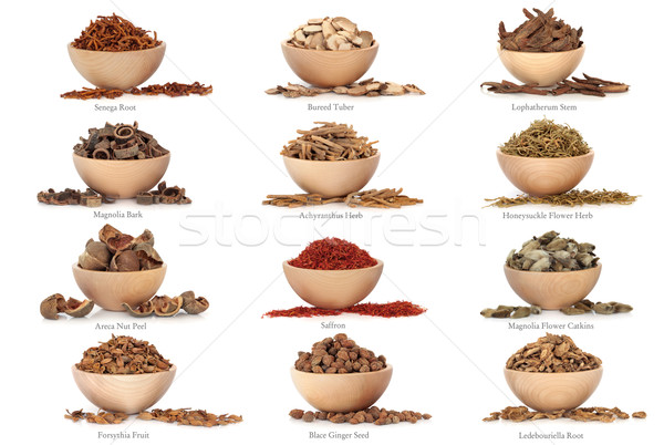 Traditional Chinese Medicine with Titles Stock photo © marilyna