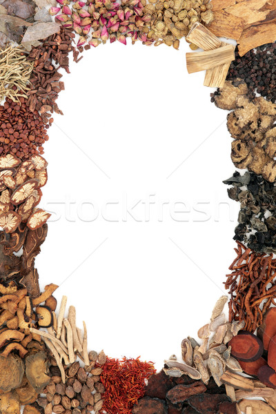 Chinese Herb Abstract Border Stock photo © marilyna