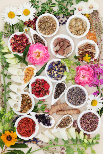 Medicinal Healing Herbs and Flowers Stock photo © marilyna