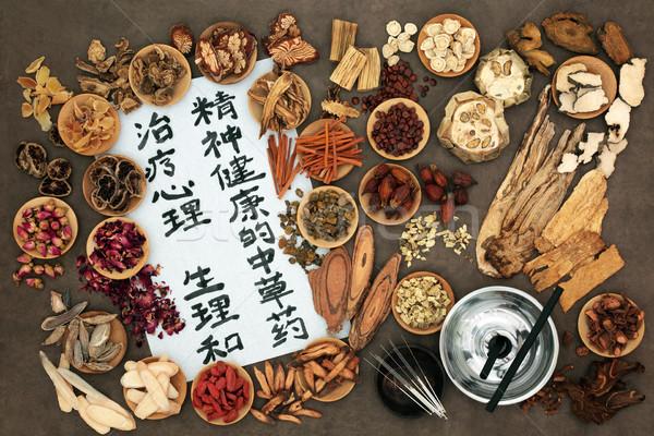 Çin akupunktur tedavi otlar Stok fotoğraf © marilyna