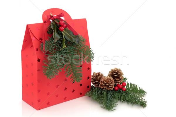 Сток-фото: Рождества · подарок · сумку · красный · звездой · дизайна