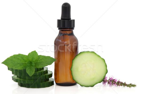 Aromatherapie Behandlung ätherisches Öl Flasche mint Blume Stock foto © marilyna