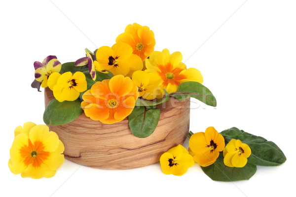 Edible Flower Salad Stock photo © marilyna