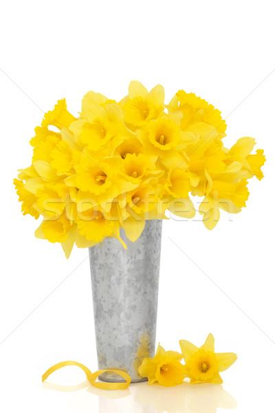スイセン 花 美 花 花瓶 黄色 ストックフォト © marilyna