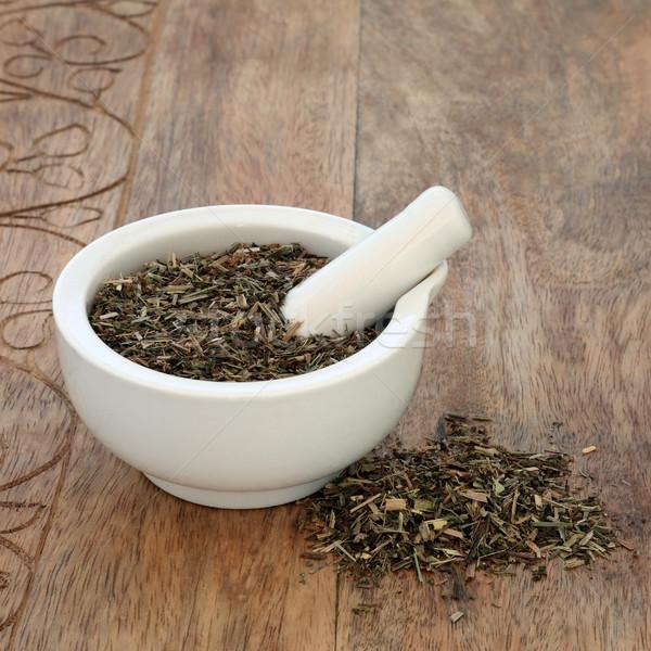 Stock photo: Cleavers Leaf Herb