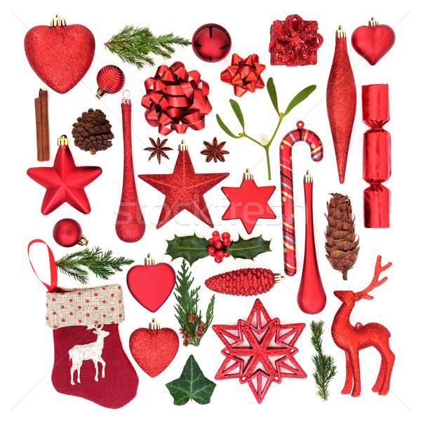 красный Рождества украшения флора рождественская елка Сток-фото © marilyna