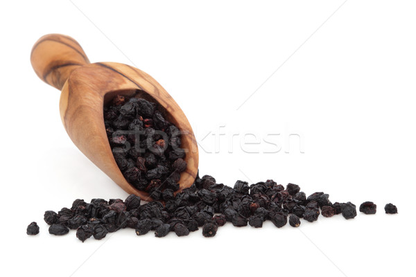 Stock photo: Elderberry Fruit