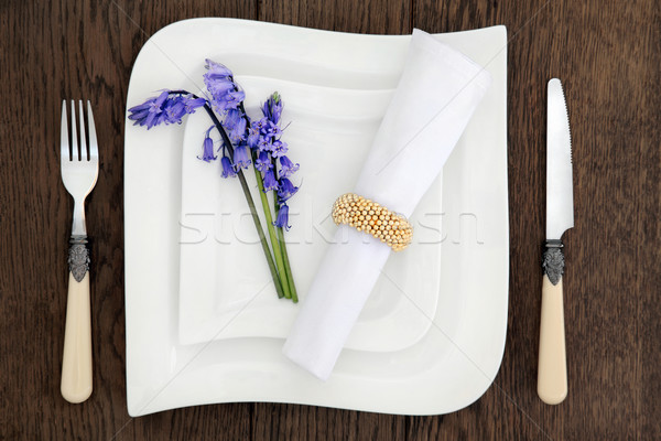 Bluebell Place Setting Stock photo © marilyna