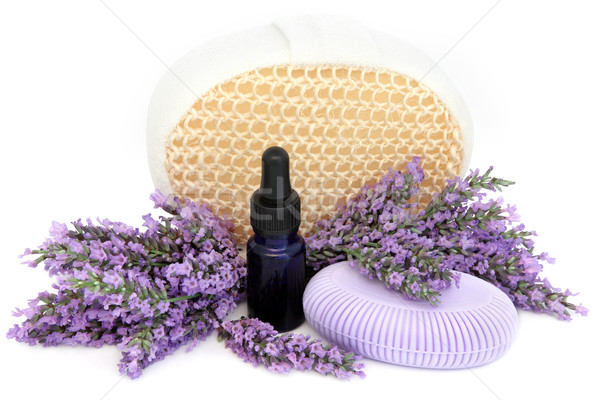 Lavender Herb Products Stock photo © marilyna