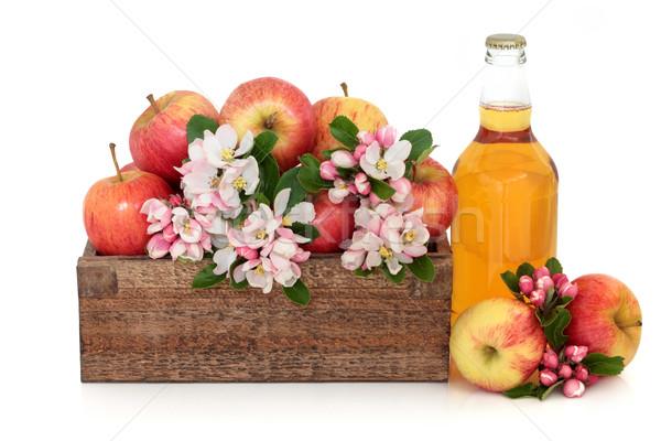 Stok fotoğraf: Elma · şarabı · elma · çiçek · şişe · gala · elma