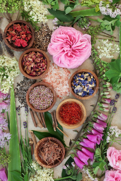 Alternative Medicine Selection Stock photo © marilyna
