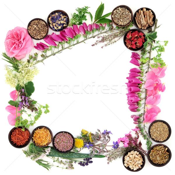 Stock photo: Herbal Medicine