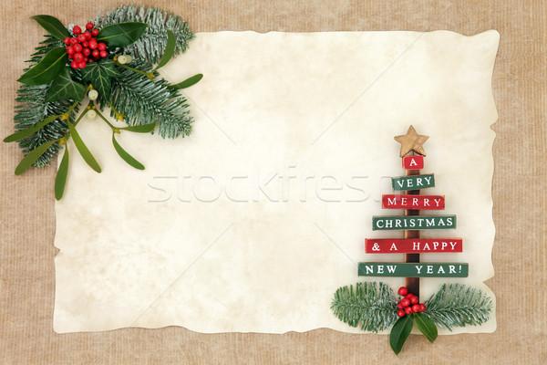 Merry Christmas Background Border Stock photo © marilyna