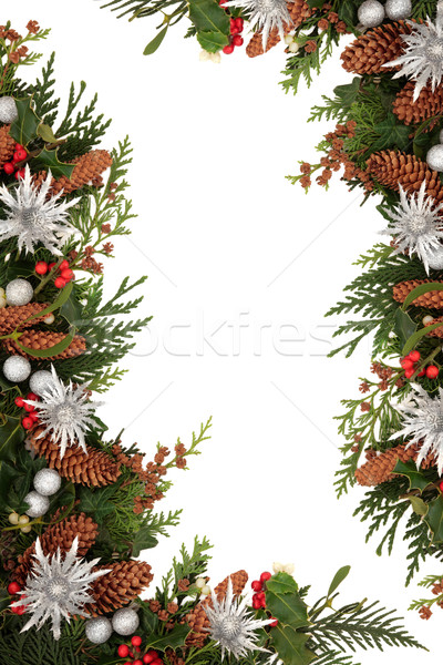 Natale confine decorativo ivy vischio cedro Foto d'archivio © marilyna