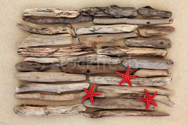 3  ヒトデ 赤 流木 抽象的な 海浜砂 ストックフォト © marilyna