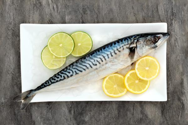 Friss makréla egészség étel hal jég Stock fotó © marilyna