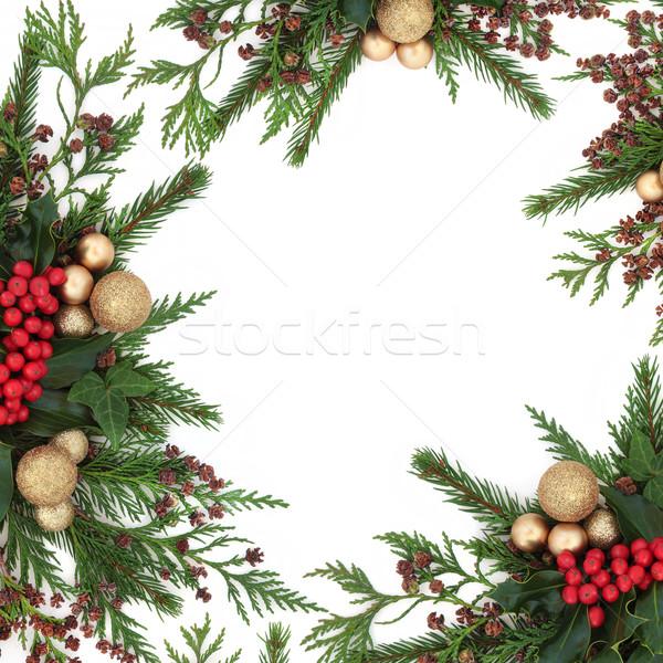 Christmas Gold Bauble Border Stock photo © marilyna