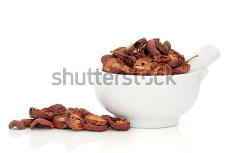Stock photo: Hawthorn Fruit