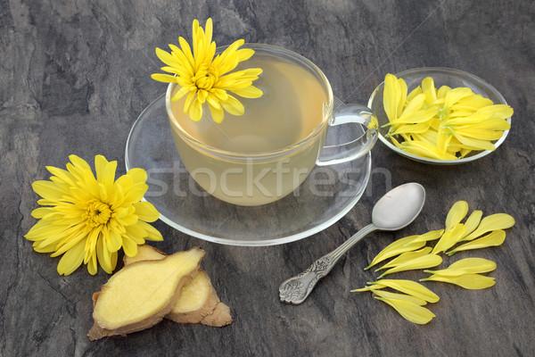 Chrysantheme Ingwer Tee Kraut Blume Glas Stock foto © marilyna