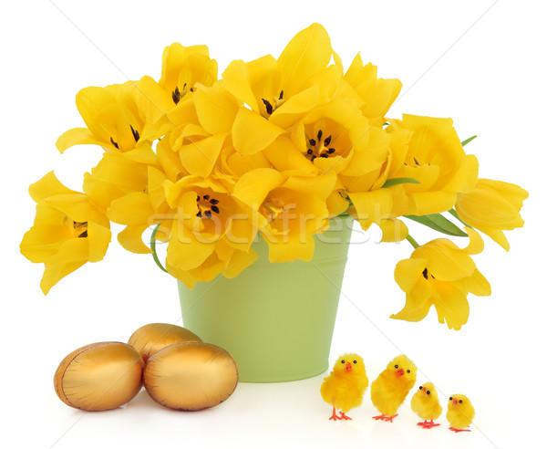 Geel tulp bloemen groene emmer Stockfoto © marilyna