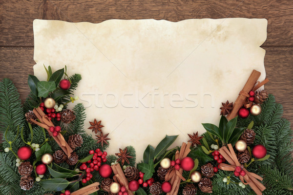 Noel baharat sınır kırmızı altın kış Stok fotoğraf © marilyna