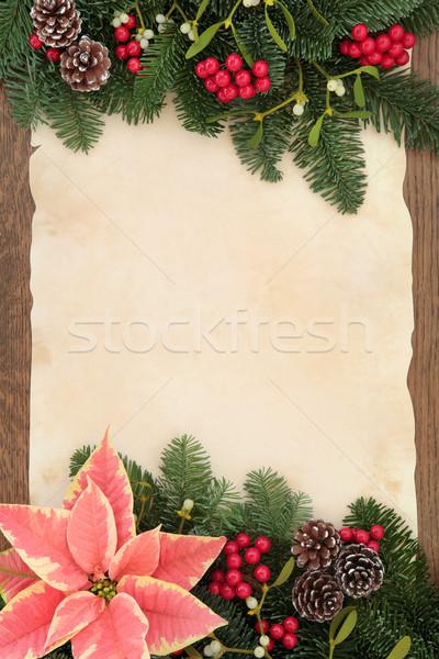 Рождества зима флора цветок красный ягодные Сток-фото © marilyna