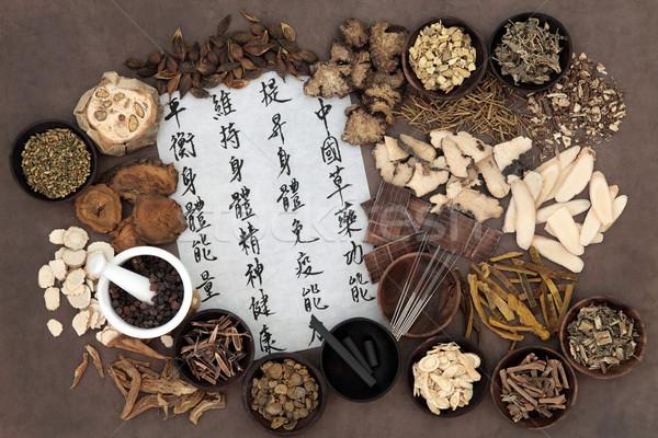 Chinês medicina alternativa acupuntura mandarim Foto stock © marilyna