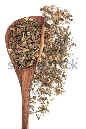 Agrimony Herb Stock photo © marilyna