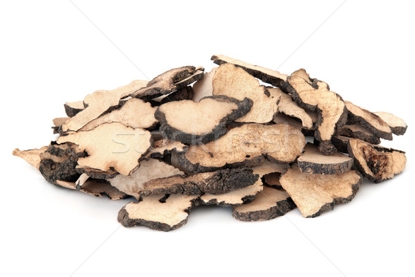 Cogumelo fungo usado chinês branco Foto stock © marilyna