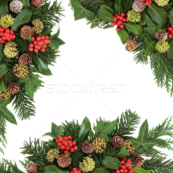 Traditional Winter Greenery Border Stock photo © marilyna